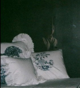 Ghost Pictures Ghost_picture_2