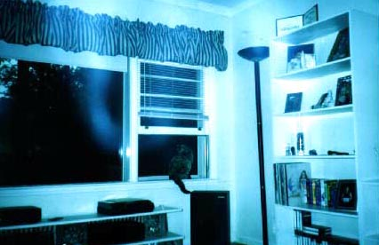 Ghost Pictures Ghost_picture_9